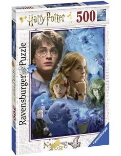 Harry Potter in Hogwarts...